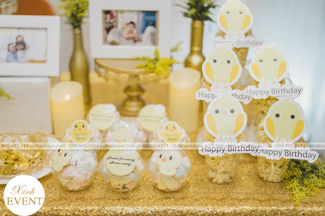 Tổ chức sinh nhật cho bé Lâm châu anh 1 tuổi - MAX01-003