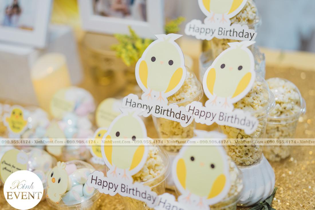 Tổ chức sinh nhật cho bé Lâm châu anh 1 tuổi - MAX01-004