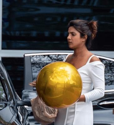 Hoa hậu Thế giới 2000 thanh lịch ra phố với bong 4D