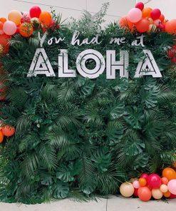 Backdrop sinh nhật phong cách Aloha XV255
