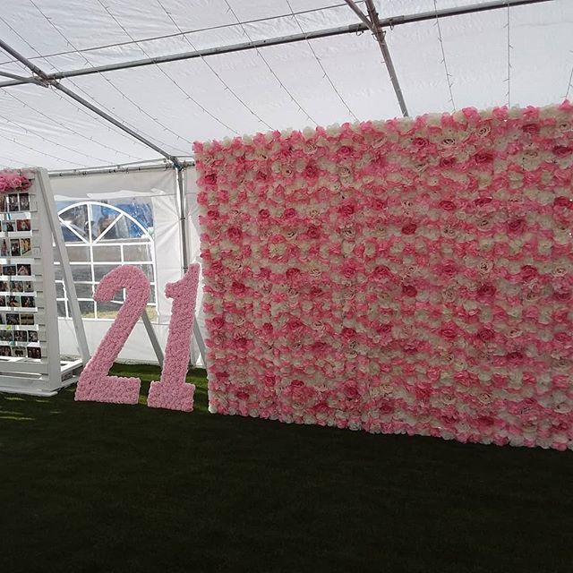 Backdrop sinh nhật hoa giấy góc nhìn 3 XV619